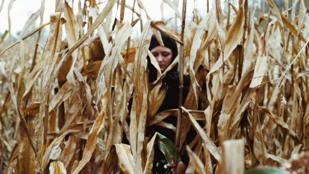 Iowa_corn_kristie_front